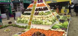 ১০৪ ধরণের সবজি নিয়ে রাজধানীতে তিন দিনব্যাপী সবজি মেলা