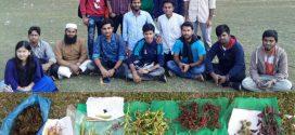 পবিপ্রবি'তে হলকৃষির উদ্যোগে Plant Sharing Event অনুষ্ঠিত