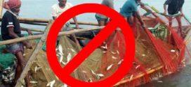 ৯-৩০ অক্টোবর উপকূলীয় এলাকার নদ-নদীতে মাছ ধরা নিষিদ্ধ