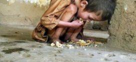 খাদ্য অপচয় বর্তমানে একটি সামাজিক ব্যাধি