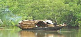 সুন্দরবনে ফের মাথা চাড়া দিয়েছে জলদস্যুত্য