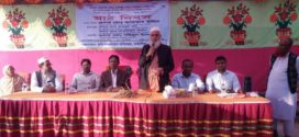 কাঠালিয়ায় ব্রিধান-৭৭'র ওপর মাঠ দিবস অনুষ্ঠিত