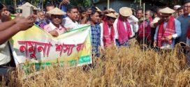 পাবনার পারগোবিন্দপুর গ্রামে নবান্ন উৎসব উদযাপন