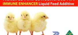Natures Ark : Immune Enhancer Feed Additive