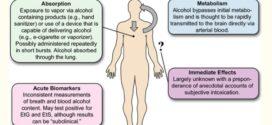 ইথানল বা এলকোহল বাষ্প মারাত্মক ক্ষতির কারণ হতে পারে -বিশ্ব স্বাস্থ্য সংস্থা