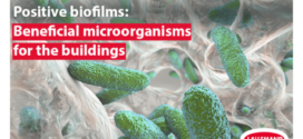 Positive biofilms: beneficial microorganisms for the buildings