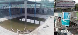 বন্যপ্রাণী প্রজনন কেন্দ্রে মা কুমির পিলপিল ৪৪ টি ডিম দিয়েছে