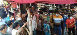 ডিএনসিসি মেয়রের ভাটারা-সাইদনগর কোরবানি পশুর হাট পরিদর্শন