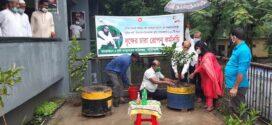 উপজেলা কৃষি অফিসার মার্জিন আরা মুক্তা'র ছাদকৃষি করার স্বপ্নপূরণ