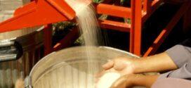 করোনাকালে ক্ষতিগ্রস্ত চালকল মালিকদের প্রণোদনা দিবে সরকার